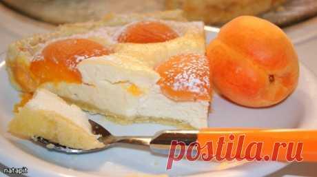 Пирог с творогом и абрикосами – кулинарный рецепт
