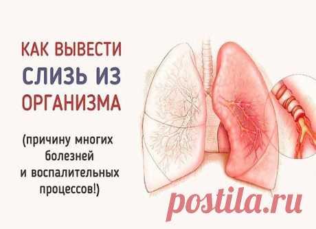 Простые способы избавления от слизи в организме  Впервые слизь в нашем организме образуется еще в раннем детстве тогда, когда мы съедаем что-то вареное. По мере того как мы растем, слизь накапливается и заполняет все полости нашего тела. Продолжение на сайте: https://moy-znahar.ru/904/Kak_izbavitqsya_ot_slizi_v_zheludke_i_v_kishechnike/