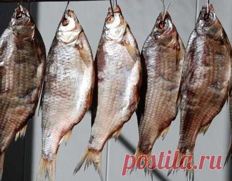 Сушить рыбу вниз головой или хвостом? Многие рыбаки очень ошибаются | Заядлый рыбак | Яндекс Дзен