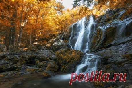 Национальный парк Шенандоа. Штат Виргиния, США. Автор фото: Алесандро Мокрогуз.
