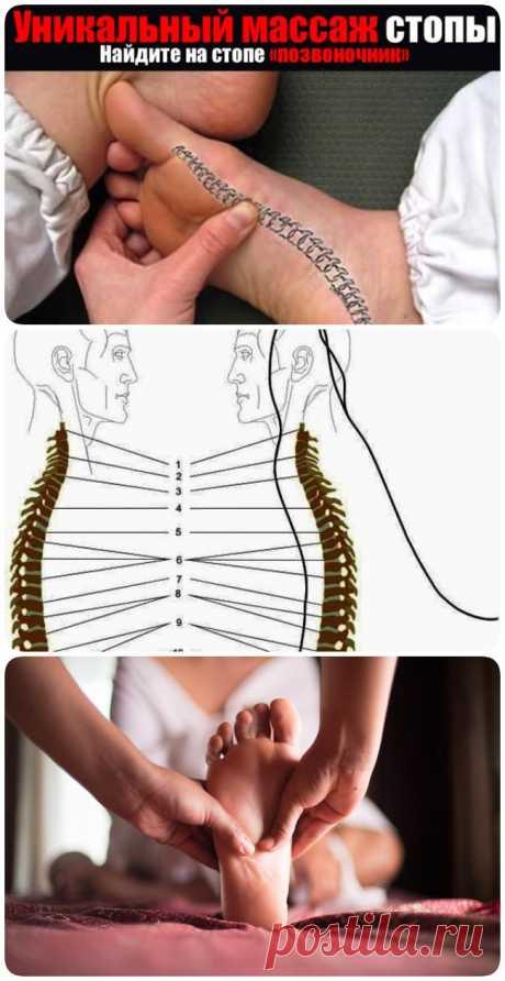 Массаж ребра стопы устранит боли в спине - womanlifeclub.ru