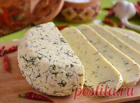 Как приготовить обалденный сыр в домашних условиях - рецепт, ингредиенты и фотографии