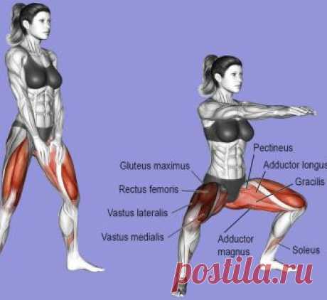 14 видов приседаний для идеальной фигуры. Регулярно выполняя эти упражнения, вы добьетесь поистине потрясающих результатов! Полноценная и разнообразная тренировка нижней части тела, состоящая из одних только приседаний.