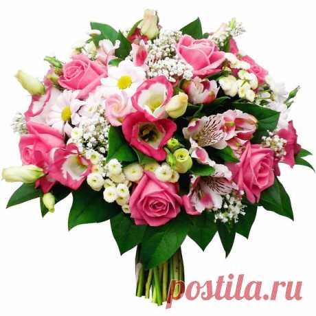 Это сообщение не для публикации :)))) Уважаемые админы группы, милые девушки! От всей души спасибо за ваш труд и восхитительные подборки!