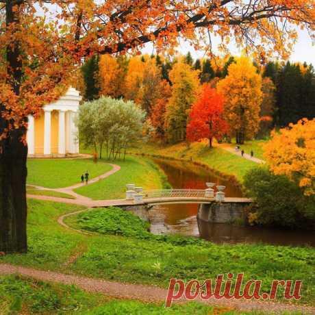 Павловский парк  Фото: t_stadnikova