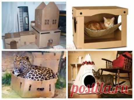 Домик для кошки своими руками: лучшие идеи и мастер-классы с фото