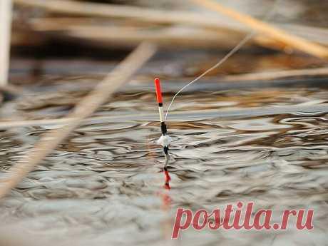 Особенности рыбной ловли в апреле.   Блоги о рыбалке, ремонте и интерьере, даче и огороде, рецептах, красоте и правильном питании
