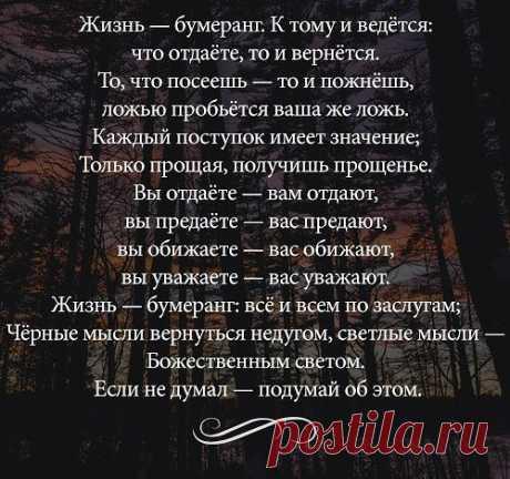 Светлана Бородина   ВКонтакте