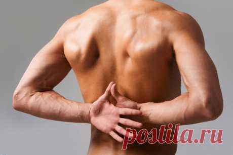 Los bornes musculares del cuello y la espalda