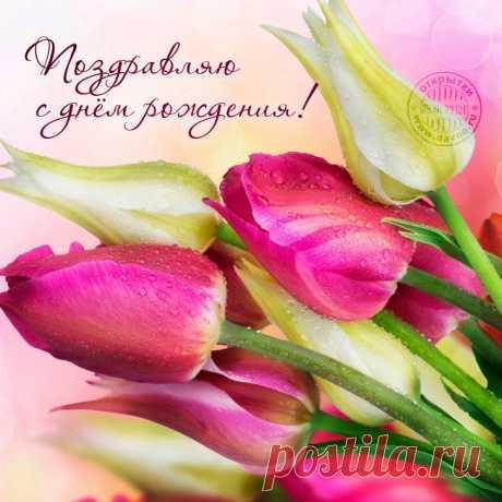 Открытка на день рождения с пастельными тюльпанами - открытка 7863 рубрики Открытки с днём рождения по теме женщине , цветы