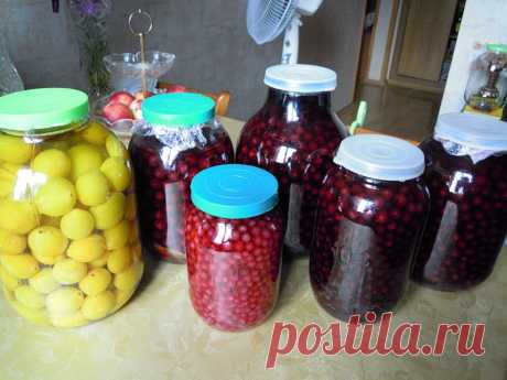 Домашнее вино, настойки, наливки из ягод и плодов