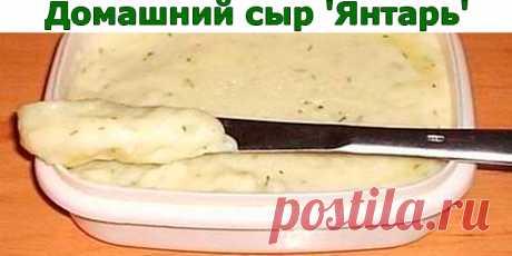 Домашний сыр 'Янтарь' Полезный сыр | Полезные советы