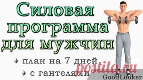 Программа упражнений для мужчин с гантелями на 7 дней