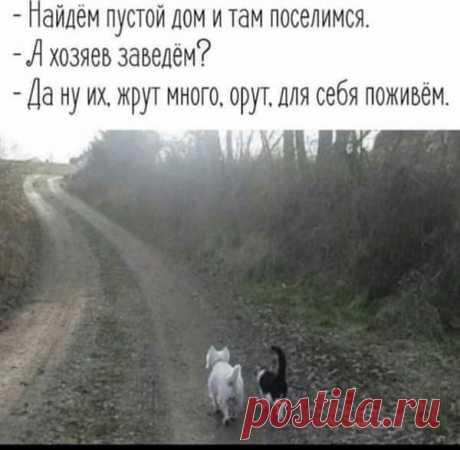 (40) Вам И Не Снилось...