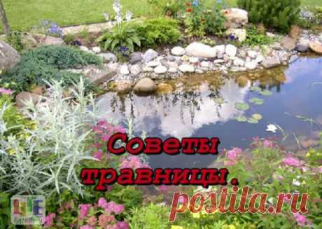 HEALTHY NUTRITION – COUNCILS SIBERIAN TRAVNITSA. \u000aMistakes in food, it is the reason of our many physical illnesses. We are ill because now that we take too many others products (we deliver many bananas, oranges, etc.). Only 10% the stranger pi are admissible …