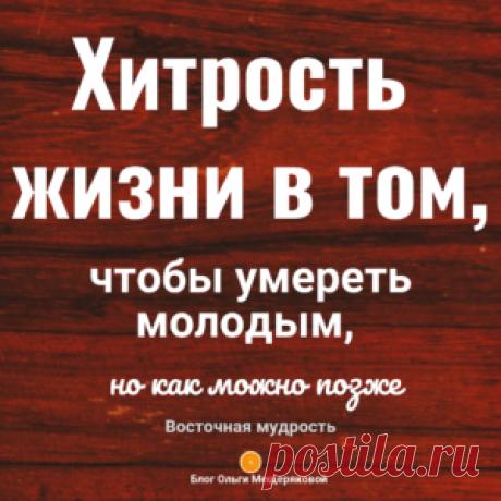 Цитаты для жизни и мотивации - Блог Ольги Мещеряковой