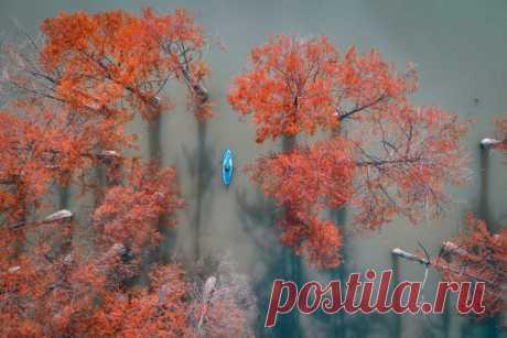 Кипарисовое озеро Сукко, Краснодарский край. Автор фото – Алексей Яковлев. Доброе утро!