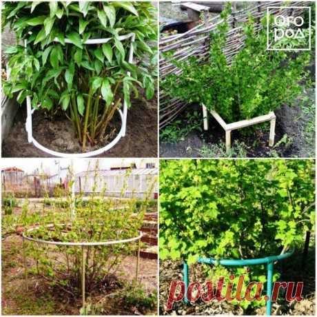 Подпорки для веток деревьев и кустов – какие бывают и как сделать самому - Садоводка