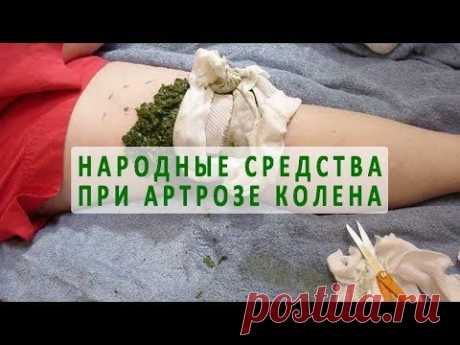 Folk remedies for treatment of arthrosis of a knee joint