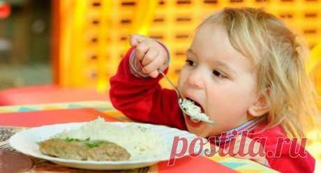 Индейка ребенку до и после 1 года: филе грудки, фарш, бедро, голень, сколько варить индейку для ребенка, рецепты блюд