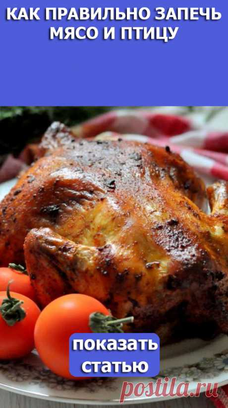 СМОТРИТЕ: Как правильно запечь мясо и птицу