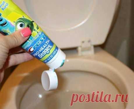Зачем кладут зубную пасту в сливной бачок унитаза?