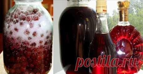 Готовим изумительный вишневый ликер из 3-х ингредиентов. В сезон, грех не воспользоваться! — Бабушкины секреты
