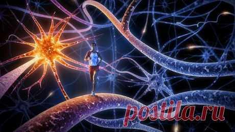 Джо Диспенза: материализация событий в Вашей жизни начинается на квантовом уровне - Brainum