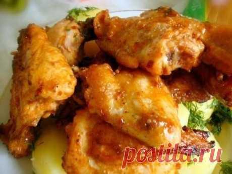 Golden Chicken hot appetizer