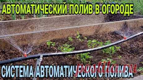 Система капельного полива Урожайная Грядка Полив огорода лейками и ведрами - утомительное и долгое занятие, но у него есть альтернатива. Система капельного полива «Урожайная Грядка» проста в установке и способна охватить площадь до 20 м2. При этом данная система экономит в 10 раз больше времени, чем поливать шлангом, ведрами, лейками и т.д.  Данная система понравилась своей полной автономностью, так как нужно только один раз установить уникальную систему капельного полива ...