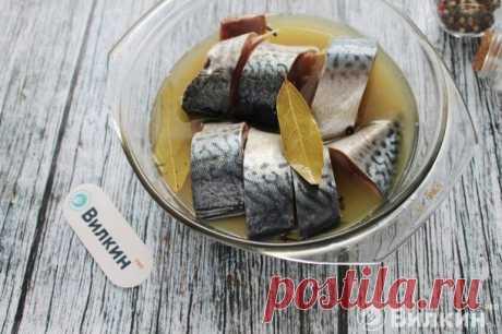 Скумбрия в горчичной заливке: рецепт засолки в домашних условиях
