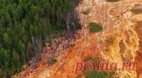😰 6 страшных фото кислотных рек в Свердловской области, которые выжигают леса Ужас.