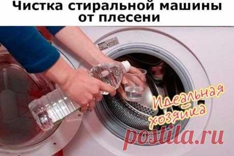 Чистка стиральной машины от плесени. В стиральной машинке время от времени появляется плесень. В интернете нашла несколько способов избавления от неё, которые, в общем-то, сводятся к обработке внутренностей машинки средствами, содержащими хлор. Сначала использовала для этих целей исключительно «Доместос», а затем поняла, что любые современные чистящие средства дают тот же эффект. Поэтому чищу тем жидким средством, которое в данный момент есть под рукой. Вам понадобится: Жи...