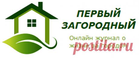 Компот из ревеня - Первый Загородный