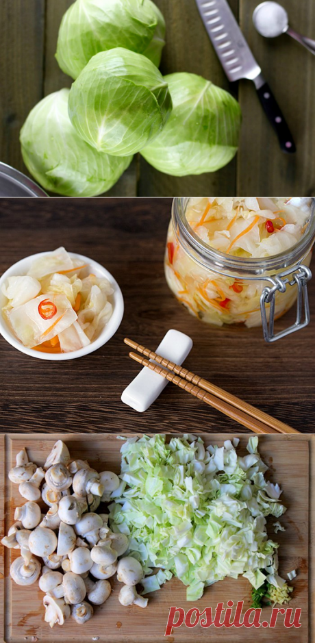 13 рецептов вкусной маринованной капусты (заготовки на зиму и не только)   Дачная кухня (Огород.ru)