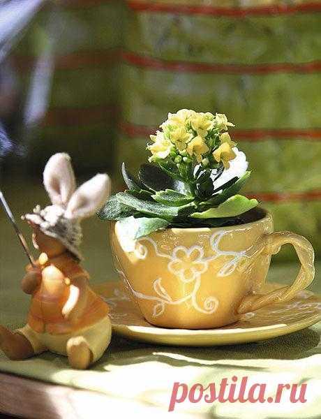 Использование посуды в качестве ваз.