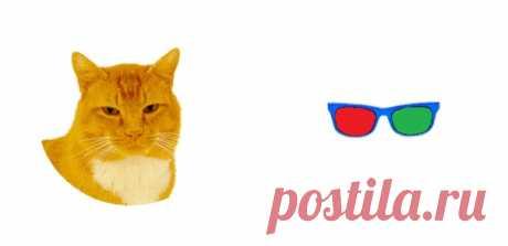 ⌘ ЗАРЯДКА ДЛЯ ГЛАЗ ⌘  Надень на кота стерео очки!!  Перед вами одно из сильнейших упражнений для тренировки зрительной системой и осознанного управления мышцами глаз. Показать полностью...