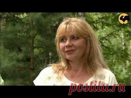 ▶ Ландшафтные хитрости.Сад в лесу! серия 76 - YouTube