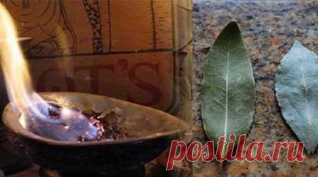 ПОДОЖГИТЕ ЛАВРОВЫЙ ЛИСТ В СВОЕМ ДОМЕ. ЗАЧЕМ? ВЫ БУДЕТЕ ПРИЯТНО УДИВЛЕНЫ! - Женский Журнал Каждый дом обладает своим ароматом. У кого-то он пахнет духами или кофе, у других же домашней едой или теплым молоком. Но бывают жилища, в которых присутствует запах невероятной свежести и чистоты. При этом вы чувствуете себя там очень уютно, так как это не искусственный запах освежителя воздуха. Очень может быть, что эти люди знают способ, …
