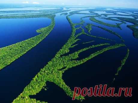 АМАЗОНИЯ, БРАЗИЛИЯ. Бразильцы шутят: люди, спорящие об Амазонии, напоминают слепых, которым дали пощупать слона с разных сторон. Смысл шутки понимаешь, когда летишь над зеленой сельвой: ей нет конца. Манаус — единственный здесь город. Он стоит там, где черные воды Рио-Негро встречаются с рыжими водами реки Соломона и текут вместе, не перемешиваясь: начиная с этого места река и называется Амазонкой. Здесь стоит попробовать рыбу пираруку. Она ровесница динозавров и достигает 300 килограммов вес