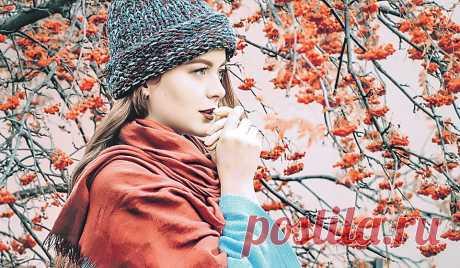 Осенние ягоды в саду: какие ягоды можно вырастить самостоятельно Казалось бы, какие ягоды могут быть осенью? Уже морозы, порой уже и снег выпадает, но именно сейчас наступает время трех плодовых растений: калины, рябины и терна. Рассказываем, как их вырастить в саду в ноябре
