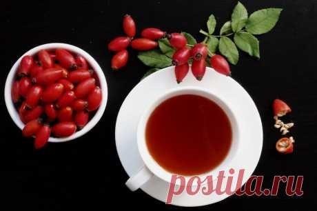 Как пить шиповник: польза, вред, советы экспертов | Саша Коновалова | Яндекс Дзен