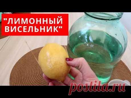"""Необычный РЕЦЕПТ напитка """"ЛИМОННЫЙ ВИСЕЛЬНИК"""" - YouTube"""