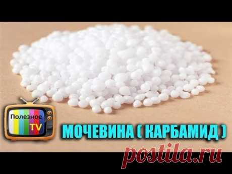 UREA (CARBAMIDE) MINERAL FERTILIZER, APPLICATION, PROPERTIES AND EXPENSE