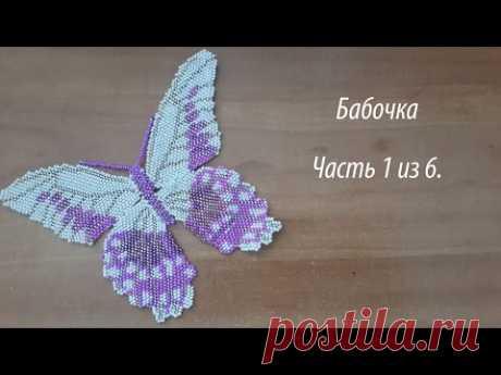 Бабочка Часть 1 из 6.