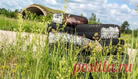ФОТО. Заброшенный аэродром в Вайнёде – первые дирижабли в Латвии, охрана границ СССР и сараи для сена - DELFI