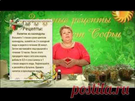 La curadora Sofia Nagornyak - las propiedades Medicinales de la caléndula
