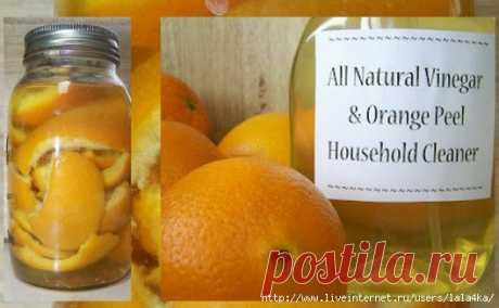 Натуральная бытовая химия из апельсиновых корок | Четыре вкуса
