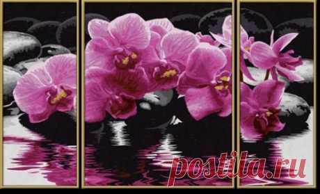 Картины по номерам - Цветы