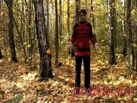 УПР.№6---БОЛЬШОЙ  МАЯТНИК--Дыхательная гимнастика Стрельниковой от всех болезней | Bodymaster О спорте и фитнесе | Яндекс Дзен
